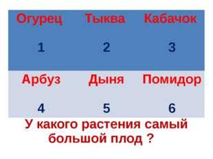 У какого растения самый большой плод ? Огурец 1 Тыква 2 Кабачок 3 Арбуз 4 Дын