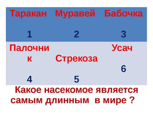 Какое насекомое является самым длинным в мире ? Таракан 1 Муравей 2 Бабочка 3...