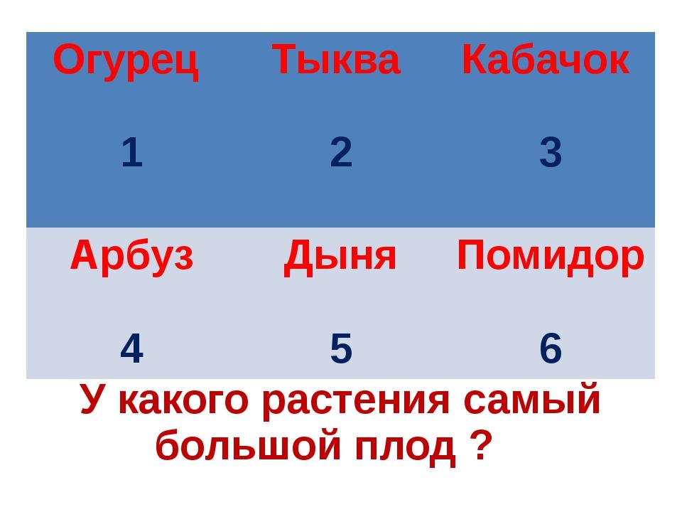 У какого растения самый большой плод ? Огурец 1 Тыква 2 Кабачок 3 Арбуз 4 Дын...
