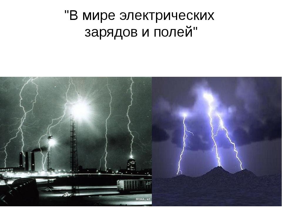 """""""В мире электрических зарядов и полей"""""""