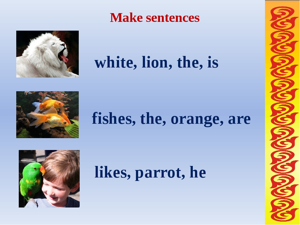 Make sentences white, lion, the, is fishes, the, orange, are likes, parrot, he