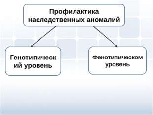 Генотипический уровень Фенотипическом уровень Профилактика наследственных ано