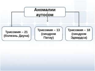 Трисомия – 21 (болезнь Дауна) Трисомия – 13 (синдром Патау) Трисомия – 18 (си