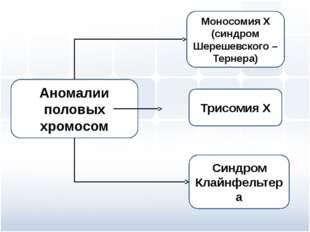 Моносомия Х (синдром Шерешевского – Тернера) Трисомия Х Синдром Клайнфельтера