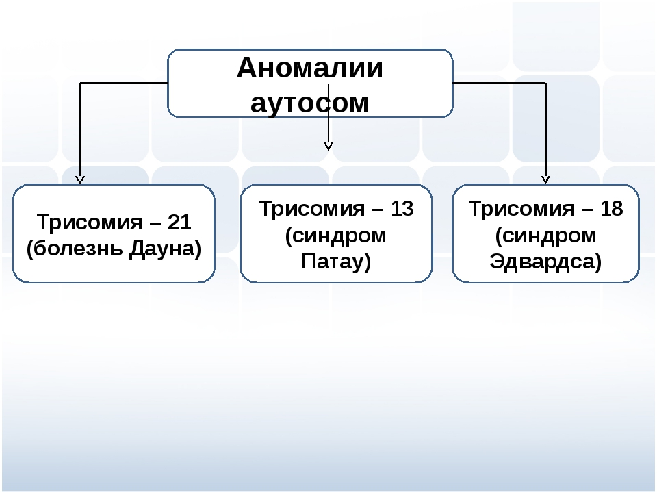 Трисомия – 21 (болезнь Дауна) Трисомия – 13 (синдром Патау) Трисомия – 18 (си...