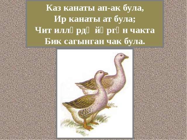 Каз канаты ап-ак була, Ир канаты ат була; Чит илләрдә йөргән чакта Бик сагынг...