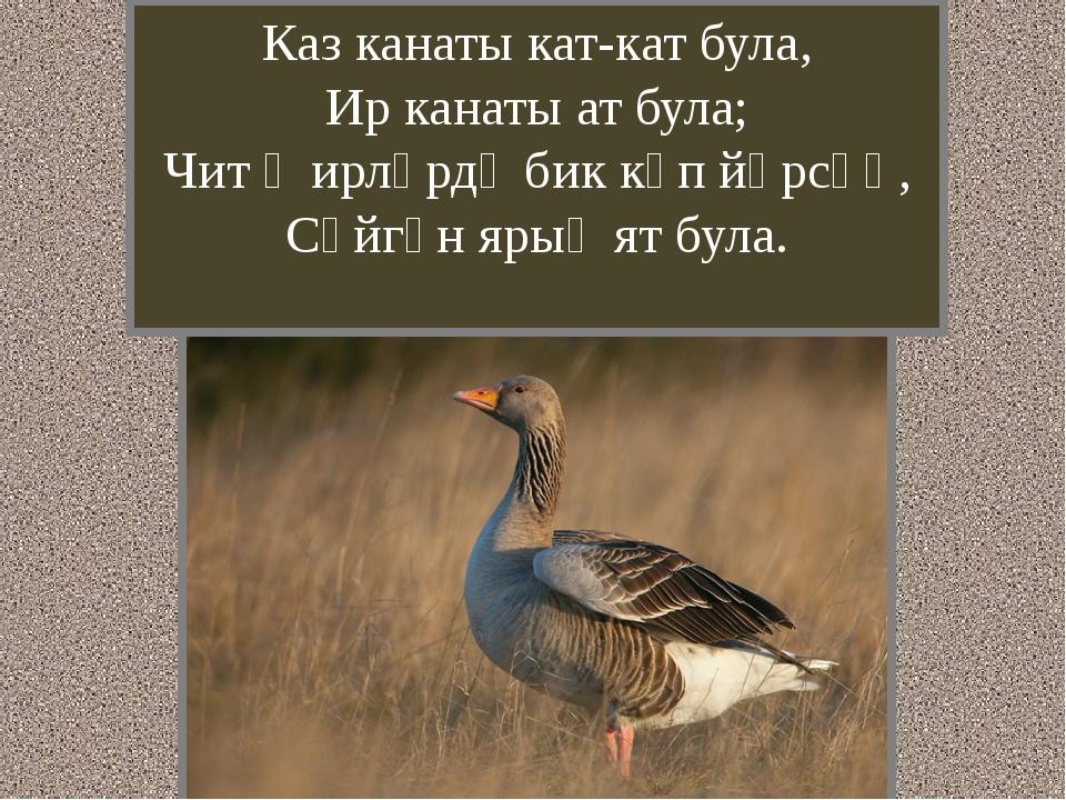 Каз канаты кат-кат була, Ир канаты ат була; Чит җирләрдә бик күп йөрсәң, Сөйг...