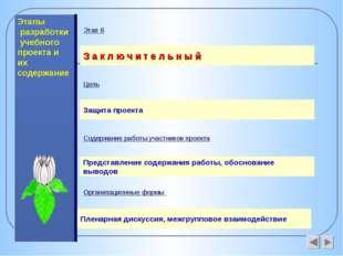 Этапы разработки учебного проекта и их содержание З а к л ю ч и т е л ь н ы й
