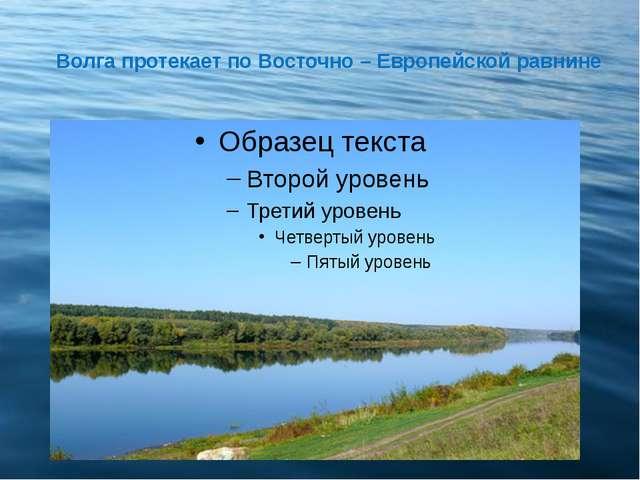 Волга протекает по Восточно – Европейской равнине