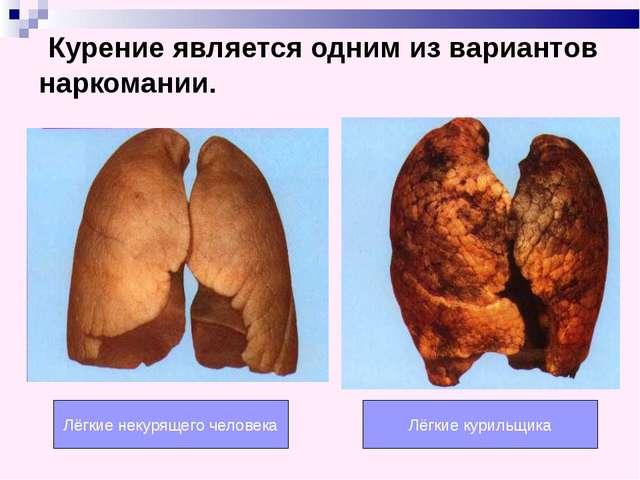 Лёгкие некурящего человека Лёгкие курильщика Курение является одним из вариан...