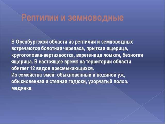 Рептилии и земноводные В Оренбургской области из рептилий и земноводных встре...