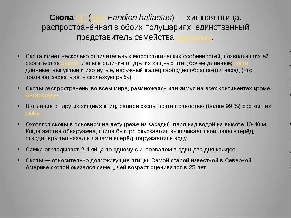Скопа́[1] (лат.Pandion haliaetus)— хищная птица, распространённая в обоих п...