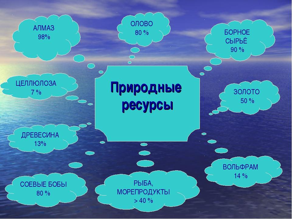 Природные ресурсы АЛМАЗ 98% ОЛОВО 80 % БОРНОЕ СЫРЬЁ 90 % ЗОЛОТО 50 % ВОЛЬФРАМ...