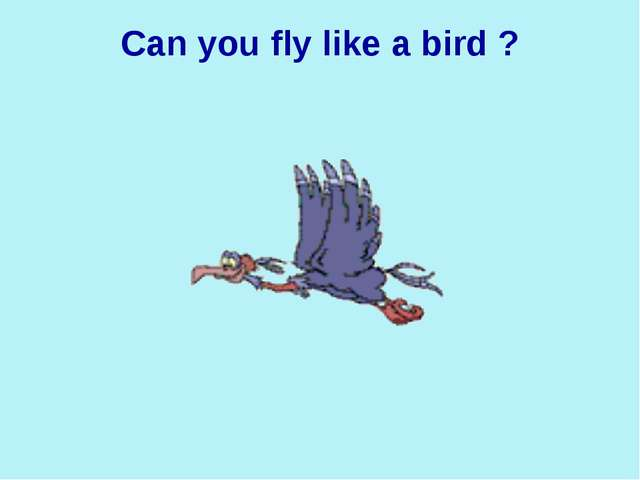 Can you fly like a bird ?