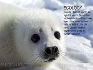 ECOLOGY Canada - the first country to sign the Vienna Convention for the prot