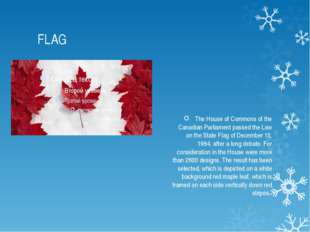 FLAG The House of Commons of the Canadian Parliament passed the Law on the St