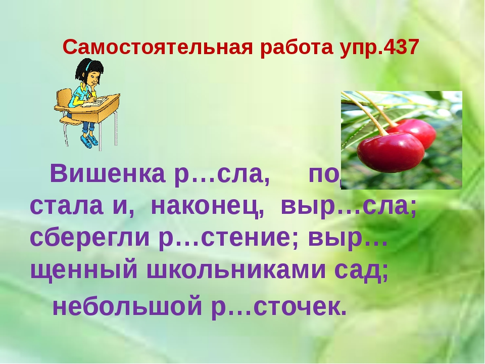 Самостоятельная работа упр.437 Вишенка р…сла, подр…стала и, наконец, выр…сла;...