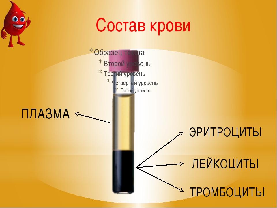 ПЛАЗМА ЭРИТРОЦИТЫ ЛЕЙКОЦИТЫ ТРОМБОЦИТЫ Состав крови