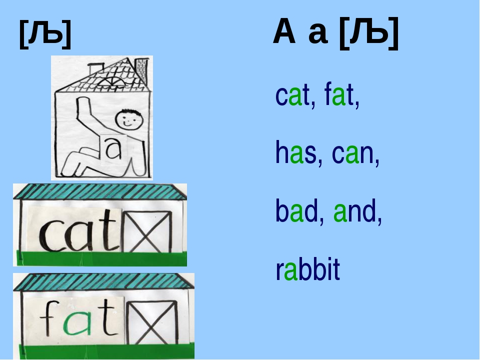 [ǣ] A a [ǣ] cat, fat, has, can, bad, and, rabbit