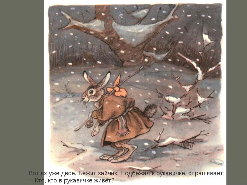 Вот их уже двое. Бежит зайчик. Подбежал к рукавичке, спрашивает: —Кто, кто...