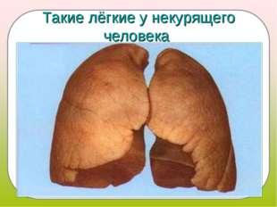 Такие лёгкие у некурящего человека
