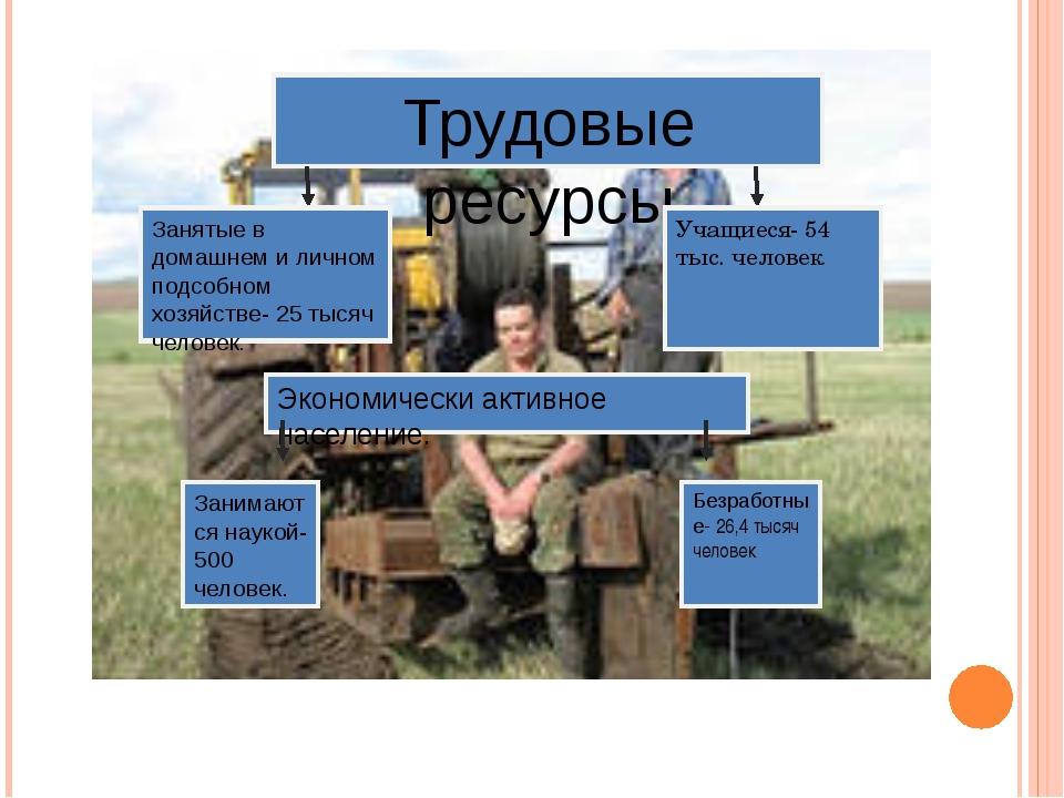 Трудовые ресурсы Занятые в домашнем и личном подсобном хозяйстве- 25 тысяч че...
