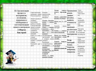III.Организация процесса восприятия, осознания, первичного обобщения и систе