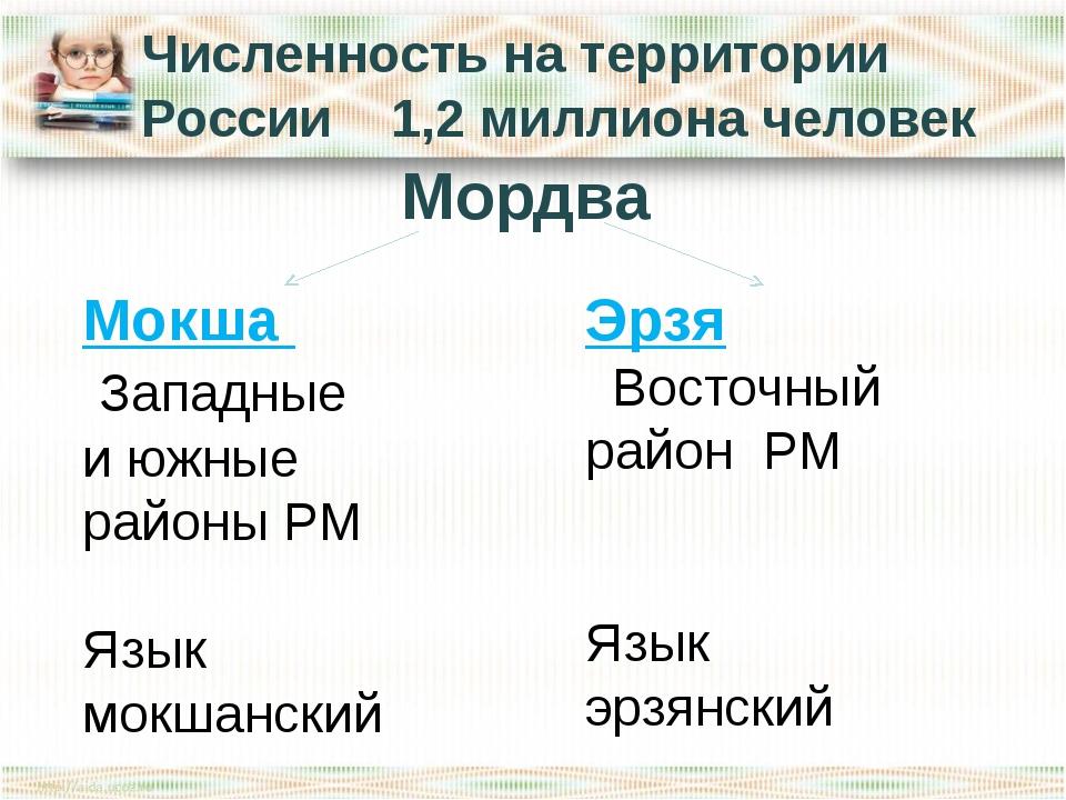 Численность на территории России 1,2 миллиона человек Мордва Мокша Западные и...