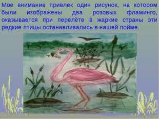 Мое внимание привлек один рисунок, на котором были изображены два розовых фла