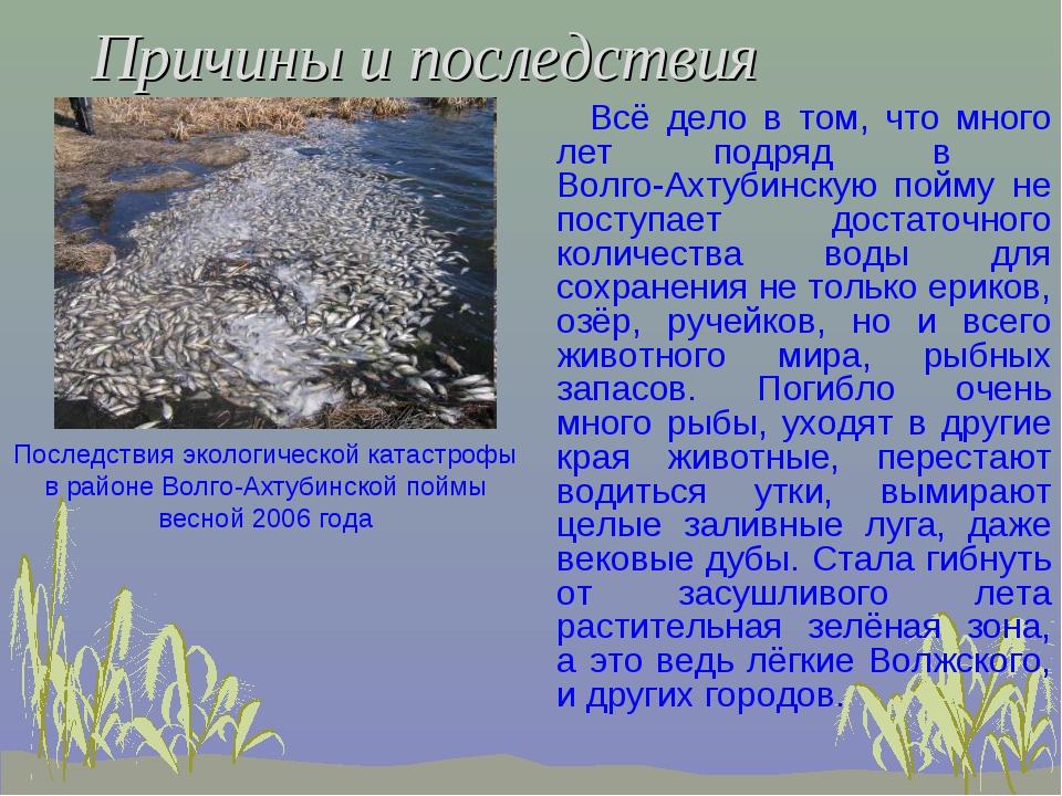 Причины и последствия Всё дело в том, что много лет подряд в Волго-Ахтубинску...