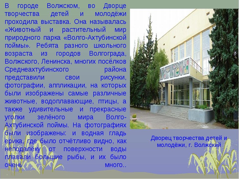В городе Волжском, во Дворце творчества детей и молодёжи проходила выставка....