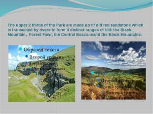 The upper 2 thirds of the Park are made up of old red sandstone which is tran