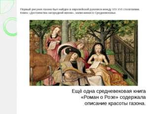 Первый рисунок газона был найден в европейской рукописи между XIV-XVI столети