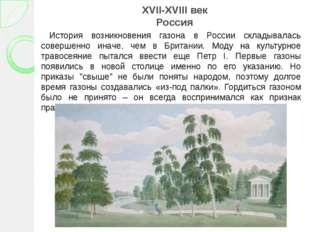 XVII-XVIII век Россия История возникновения газона в России складывалась сове