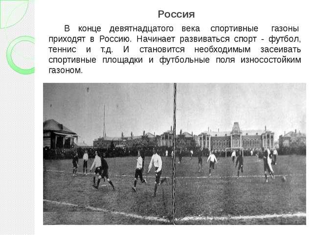 Россия В конце девятнадцатого века спортивные газоны приходят в Россию. Н...