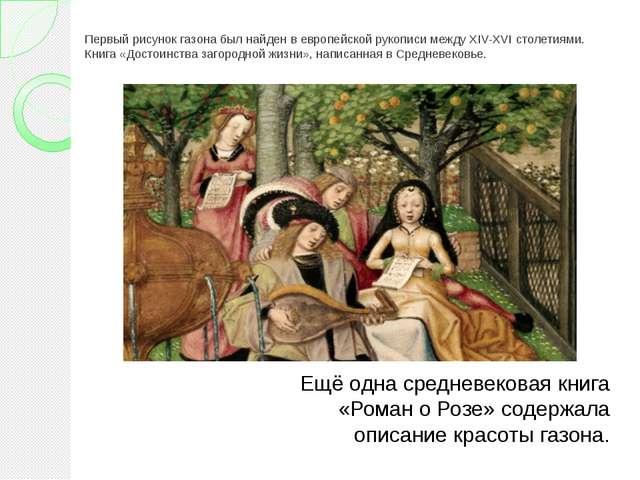 Первый рисунок газона был найден в европейской рукописи между XIV-XVI столети...