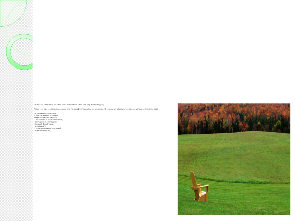 Сначала выясним что же такое газон. Обратимся к лекциям по растениеводству. Г...