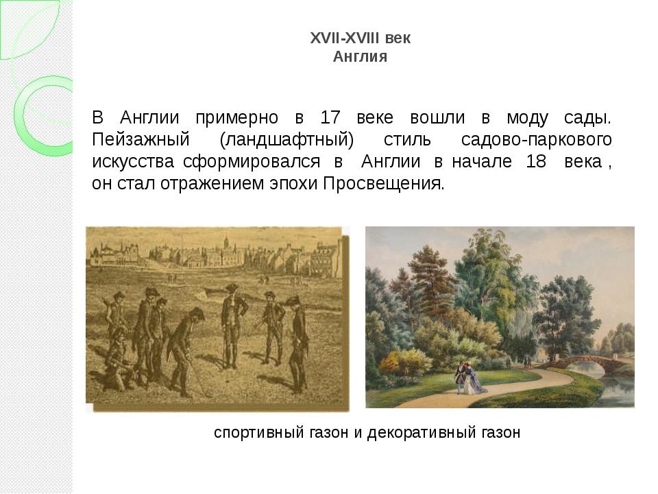 XVII-XVIII век Англия спортивный газон и декоративный газон В Англии примерно...