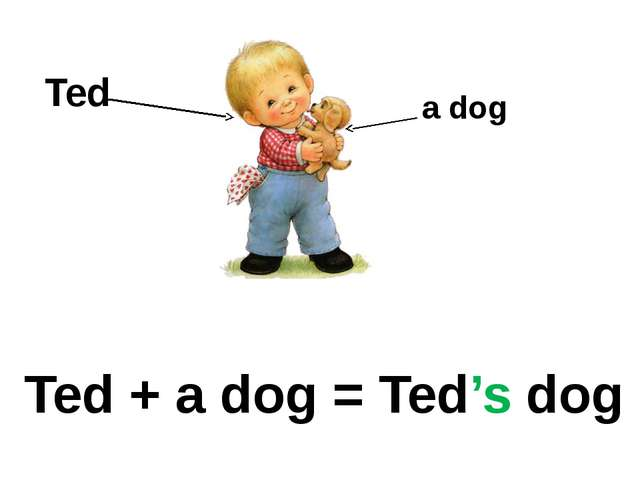 Ted + a dog = Ted's dog Ted a dog
