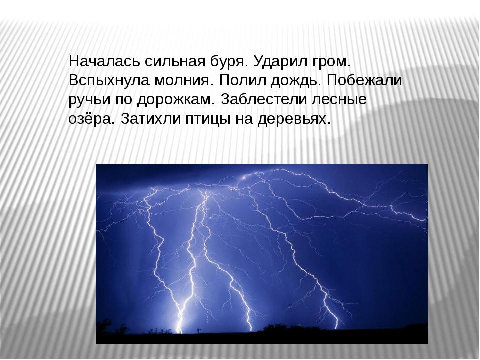 Началась сильная буря. Ударил гром. Вспыхнула молния. Полил дождь. Побежали р...