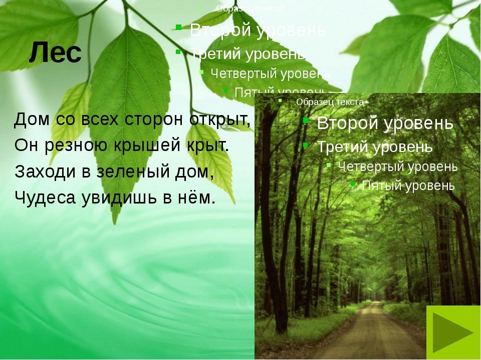 Лес Дом со всех сторон открыт, Он резною крышей крыт. Заходи в зеленый дом, Ч...