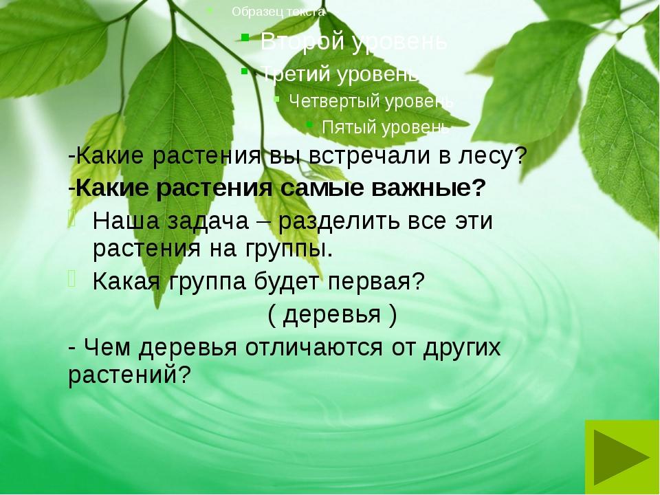 -Какие растения вы встречали в лесу? -Какие растения самые важные? Наша задач...
