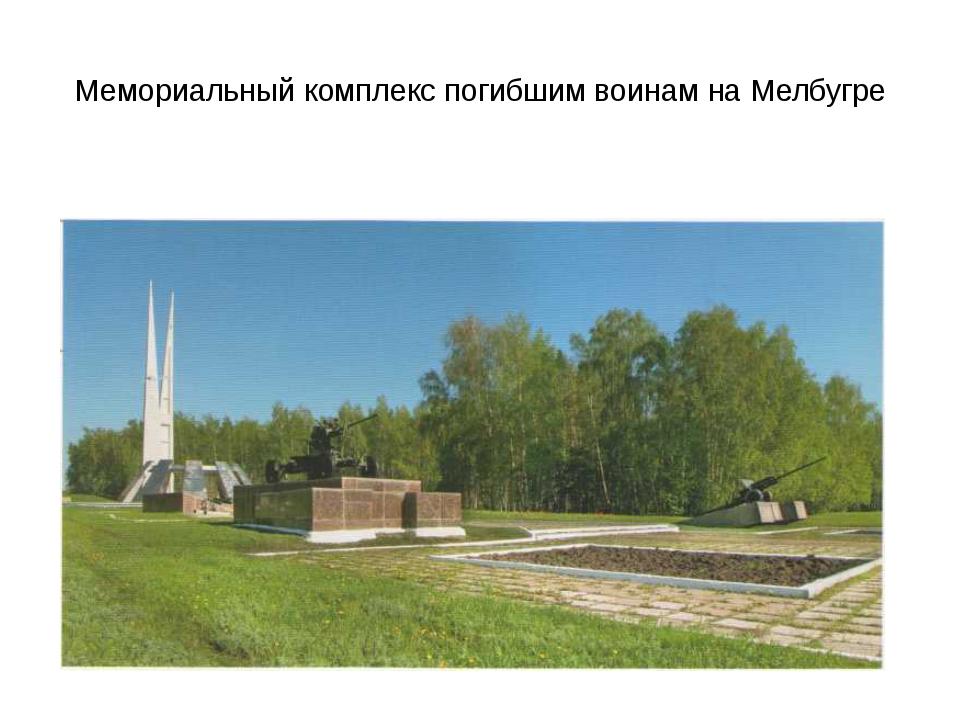 Мемориальный комплекс погибшим воинам на Мелбугре