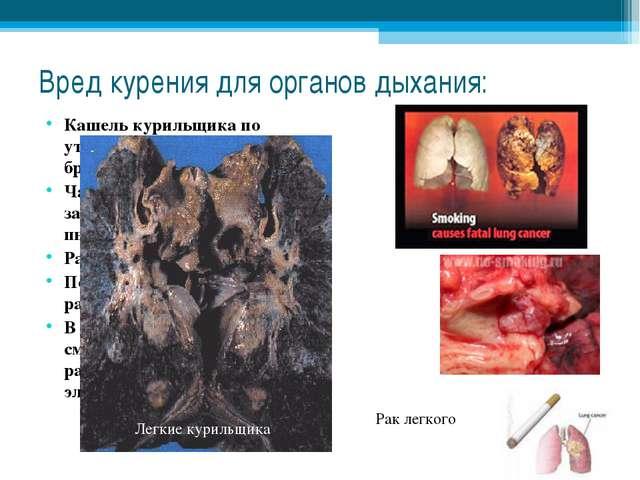 Вред курения для органов дыхания: Кашель курильщика по утрам, когда в легких...