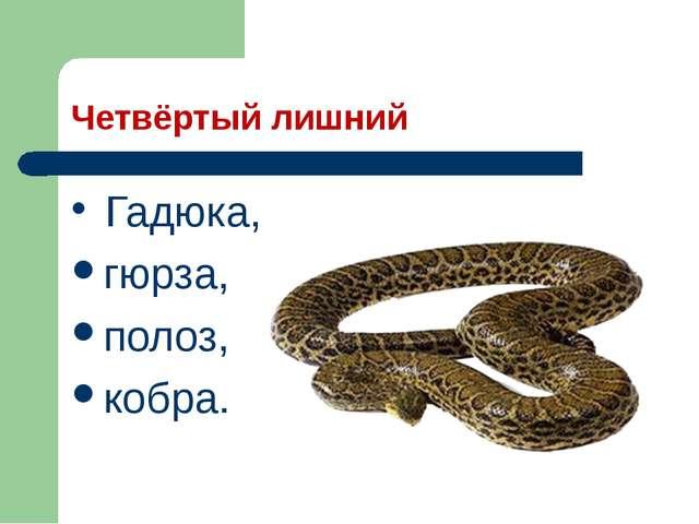 Четвёртый лишний Гадюка, гюрза, полоз, кобра.