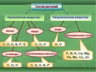 * Состав растений Органические вещества Неорганические вещества белки жиры уг