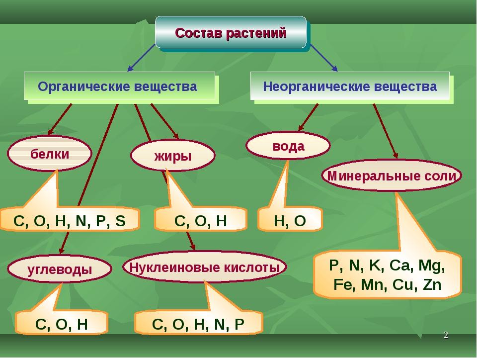* Состав растений Органические вещества Неорганические вещества белки жиры уг...