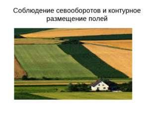 Соблюдение севооборотов и контурное размещение полей