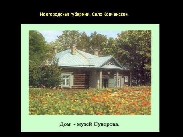 Новгородская губерния. Село Кончанское.