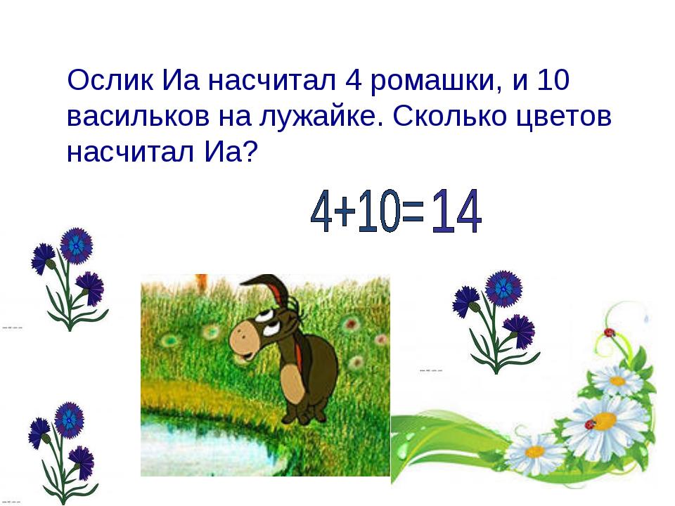 Ослик Иа насчитал 4 ромашки, и 10 васильков на лужайке. Сколько цветов насчит...